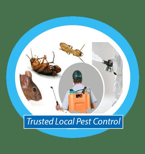 Local Emergency Pest control